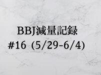 ベストボディジャパン 減量記録